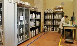 Мы в Лаборатории Розье Давенн