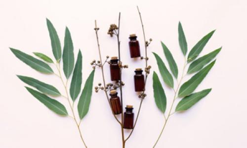Как выбрать натуральное эфирное масло – синтетические и натуральные эфирные масла